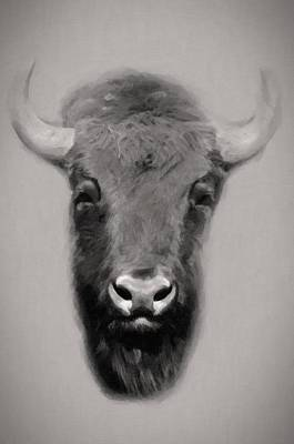Portrait Of A Buffalo Original by Tommytechno Sweden