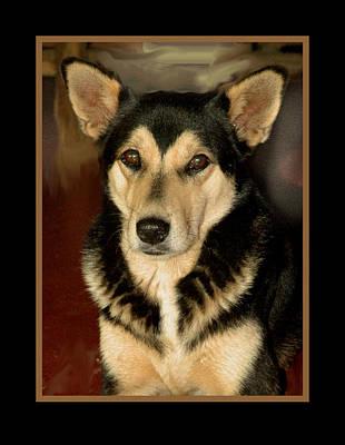 German Shepard Digital Art - Portrait Of A Dog by Serge Seymour