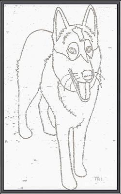 Four-legged Friends Digital Art - Portrait Of A Friend Poaf000001 by Pemaro