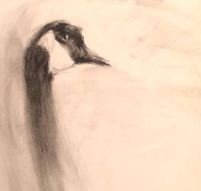 Portrait Of A Goose Art Print by Alaskan Raven Studio