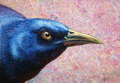 Blackbird Painting - Portrait Of A Grackle by James W Johnson
