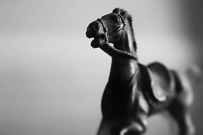 Photograph - Portrait Of A Heroic Horse by Kelly Hazel