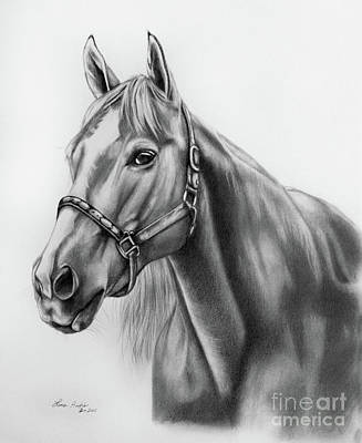 Art Paper Drawing - Portrait Of A Horse by Lena Auxier