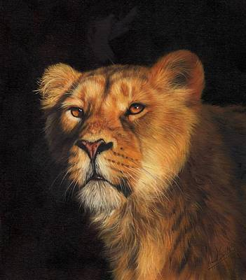 Lioness Painting - Portrait Of A Lioness by David Stribbling