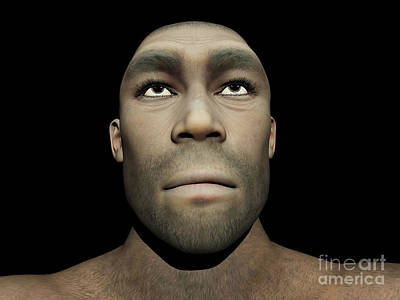 Portrait Of A Male Homo Erectus Art Print by Elena Duvernay