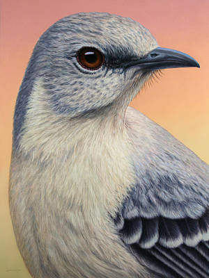 Closeup Painting - Portrait Of A Mockingbird by James W Johnson