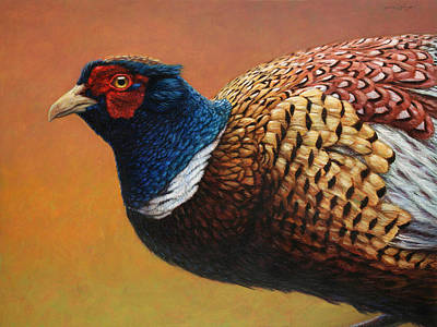 Pheasant Wall Art - Painting - Portrait Of A Pheasant by James W Johnson