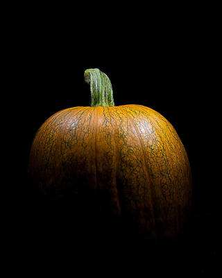 Jack O Lanterns Jackolantern Photograph - Portrait Of A Pumpkin by Wendy Thompson