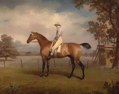 Portrait Of A Race Horse Art Print by Mountain Dreams