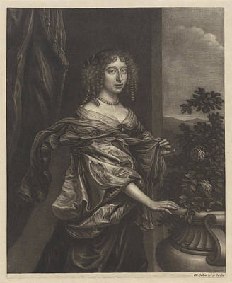 Womens Drawing - Portrait Of A Woman With A Rose Bush, Wallerant Vaillant by Wallerant Vaillant