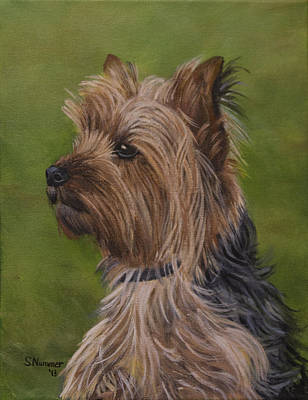 Painting - Portrait Of A Yorkie by Sharon Nummer