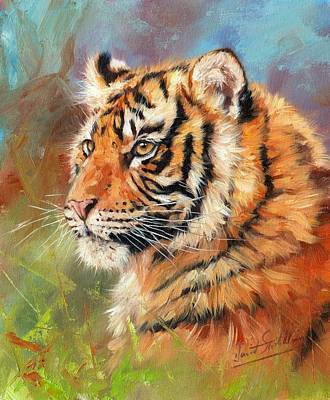 Animals Paintings - Portrait of a Young Amur Tiger by David Stribbling