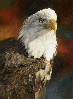 Close-up Painting - Portrait Of An Eagle by Lucie Bilodeau