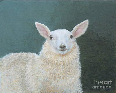 Portrait Of Ewe Art Print