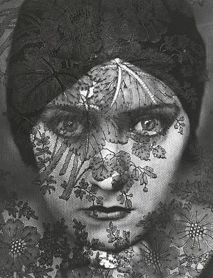 Film Photograph - Portrait Of Gloria Swanson Behind Lace by Edward Steichen