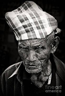 Photograph - Portrait Of Life by Ian Gledhill