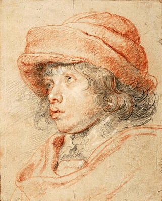 Aristocrat Drawing - Portrait Of Nicolaas Rubens by Peter Paul Rubens