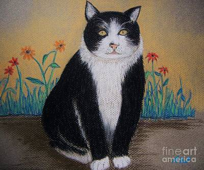 Pastel - Portrait Of Teddy The Ninja Cat by Reb Frost