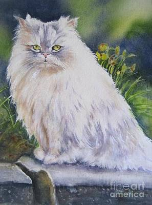 Portrait Of White Cat Art Print by Patricia Pushaw