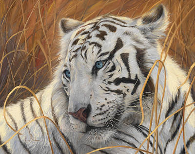 Tiger Wall Art - Painting - Portrait White Tiger 1 by Lucie Bilodeau