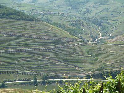 Ben Weinberg Photograph - Portugal Douro - Hillside View by Benjamin Weinberg