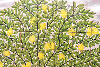 Portugal, Evora, Hand Painted Ceramic Art Print by Jim Engelbrecht