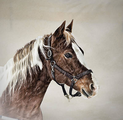 Posed Art Print by Gary Smith