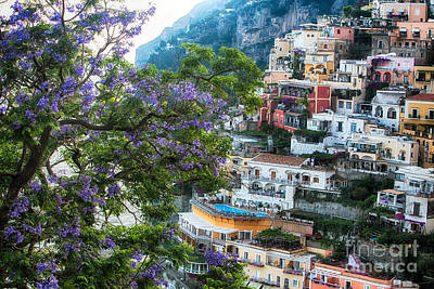 Jacaranda Tree Photograph - Positano Summer View by George Oze