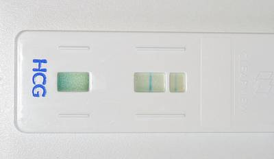 Pregnancy Wall Art - Photograph - Positive Pregnancy Test by Dr P. Marazzi/science Photo Library