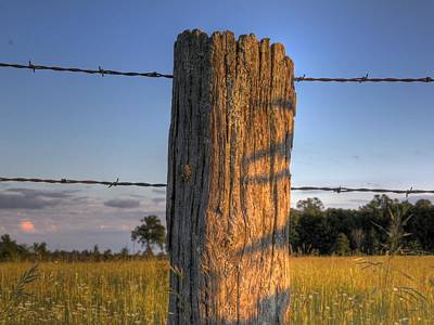 Photograph - Post And Barb Wire by Larry Capra