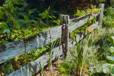 Digital Art - Post And Rail Garden Fence 1 by Fran Woods