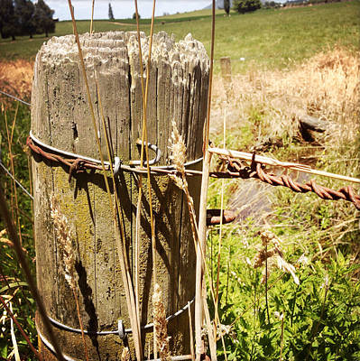 Fencepost Photograph - Post And Wire by Les Cunliffe