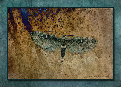 Photograph - Post Flight by WB Johnston