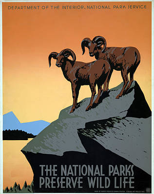 Mountain Goat Painting - Poster National Parks by Granger