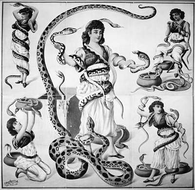 Python Painting - Poster Snake Charmers by Granger