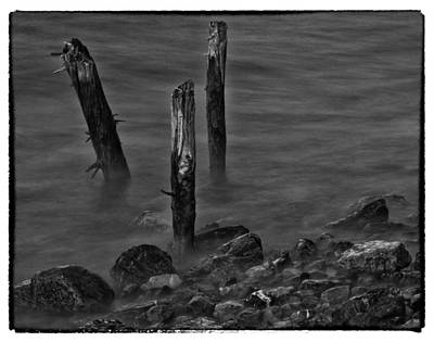Posts In The Water Art Print by Craig Brown