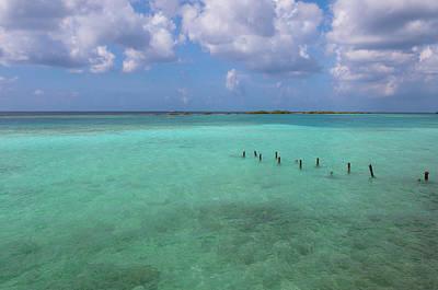 Antilles Photograph - Posts In Water, Mangel Halto Beach by Alberto Biscaro