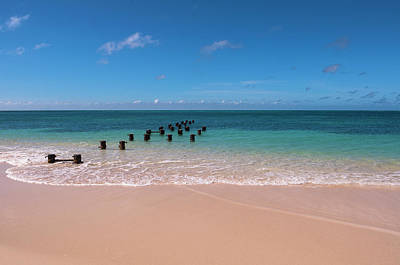 Antilles Photograph - Posts In Water, Rodgers Beach, Aruba by Alberto Biscaro