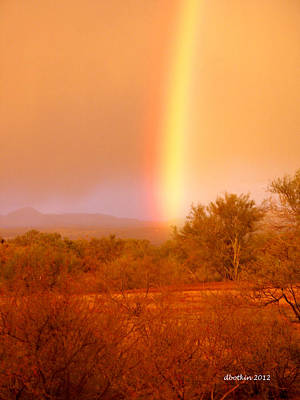 Photograph - Pot O Gold by Dick Botkin