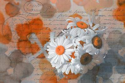 Photograph - Pot Of Daisies 02 - S3r-rngt1d by Variance Collections
