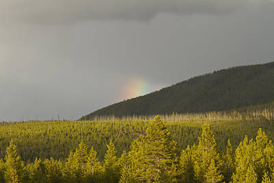 Photograph - Pot Of Gold by Jack R Perry