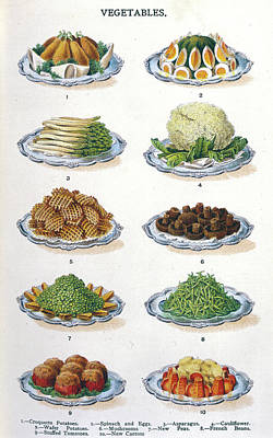 Asparagus Drawing - Potato Croquettes - Spinach &  Eggs by Mary Evans Picture Library