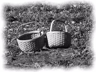 Photograph - Potato Harvest 10 by Gene Cyr