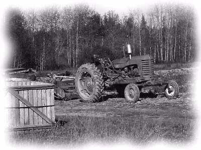 Photograph - Potato Harvest 15 by Gene Cyr