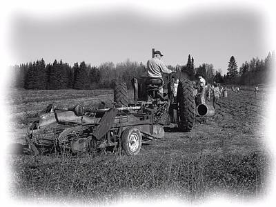 Photograph - Potato Harvest 16 by Gene Cyr