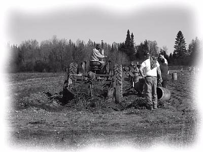 Photograph - Potato Harvest 17 by Gene Cyr