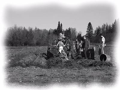 Photograph - Potato Harvest 18 by Gene Cyr