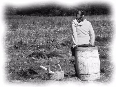 Photograph - Potato Harvest 9 by Gene Cyr