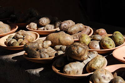 Peru Photograph - Potatoes by Ivo Kerssemakers