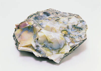 Opal Photograph - Potch Opal With Smooth And Rough Surface by Dorling Kindersley/uig